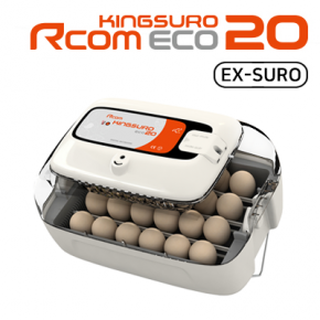 Rcom KINGSURO ECO 20 (manual)
