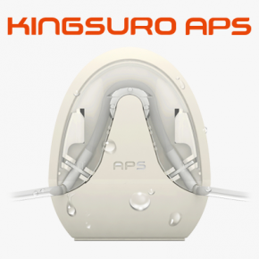 KINGSURO APS (egg)
